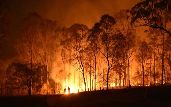 Summer's Coming Fast - Are You Bushfire Ready?