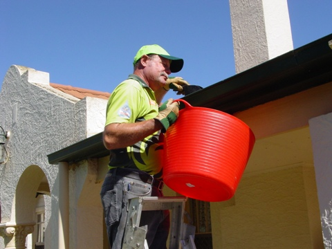 Gutter cleaning v i p home services for Vip lawn mowing services