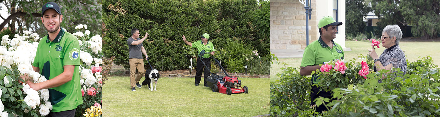 Local gardening services maintenance cleaning care for Vip lawn mowing services
