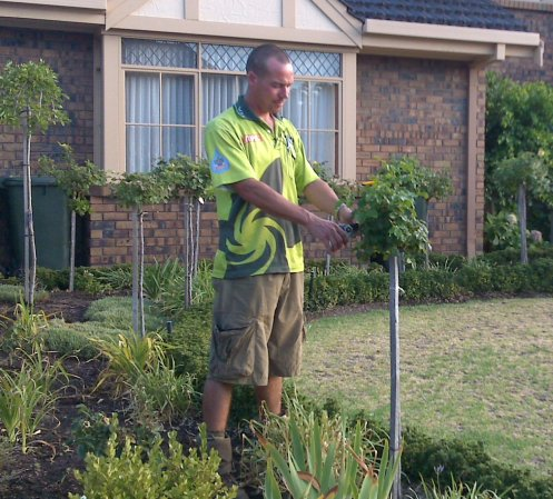 Pruning v i p home services for Vip lawn mowing services
