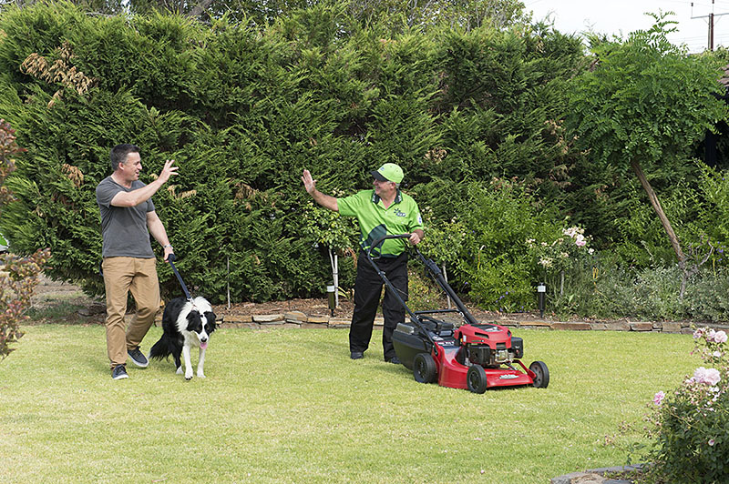 Lawn mowing service v i p home services for Vip lawn mowing services
