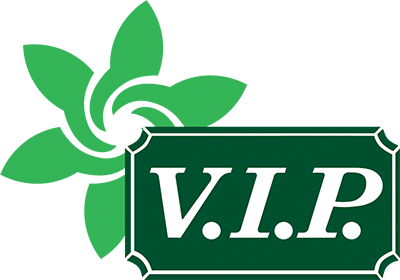 House Cleaning Services from V I P  Home Services