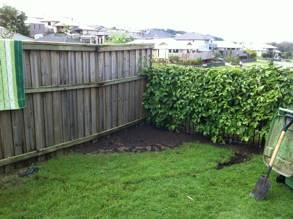 Garden services maintenance lawn mowing service in hope for Home and garden maintenance services