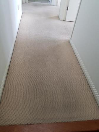 Before photo of carpet cleaning at rental property in Northgate, Brisbane.
