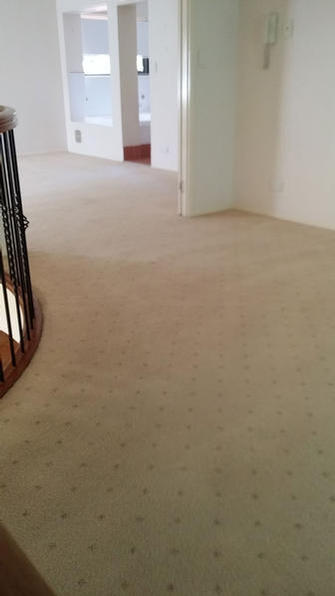 Cleaned living area in rental property at Wavell Heights, Brisbane