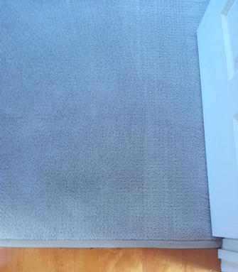 Carpet in rental property at Auchenflower, Brisbane - Carpet in rental property at Auchenflower , Brisbane , after the V.I.P. Home Services Carpet Cleaning Service