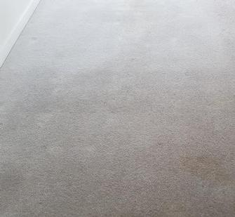Bowen Hills, Brisbane -  Picture of badly stained wool carpet in Bowen Hills, Brisbane, after cleaning with the V.I.P. Home Services Carpet Cleaning Service.