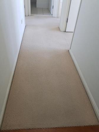 After photo of carpet cleaning at rental property in Northgate, Brisbane.
