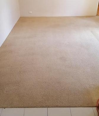 Ascot, Brisbane - Picture of rental property in Ascot, Brisbane , after cleaning using the V.I.P. Home Services Carpet Cleaning Service.
