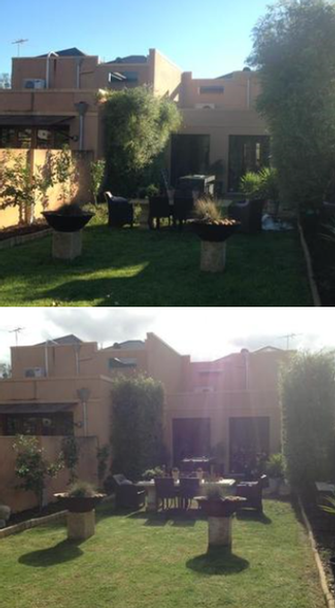Lawn mowing & hedging in Unley - before & after