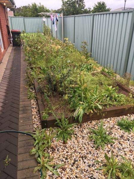 Garden services maintenance lawn mowing service in for Local garden maintenance