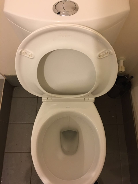 toilet after 2