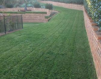 Mowing Standards - Your lawn deserves to look the best.