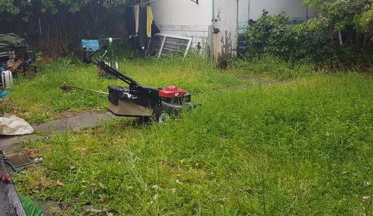 Lawn Clean up in Nedlands (before)