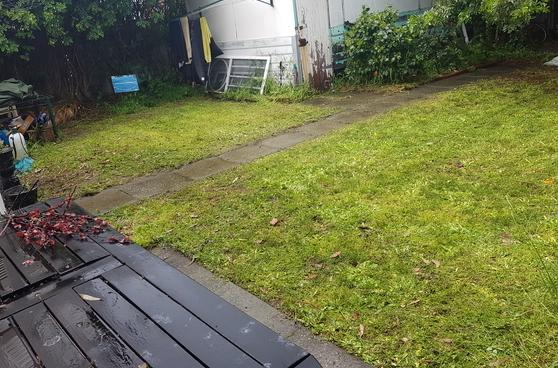 Lawn clean up in Nedlands (after)