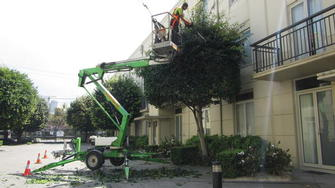 Quest Apartments hedge trimming - Elevated work platform for hedge trimming in South Yarra.