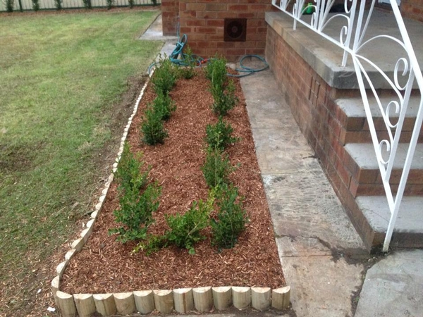 New mulch, edging and plants